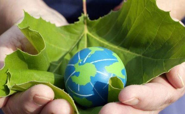 India plans to establish NE as the Bio-Economic Hub