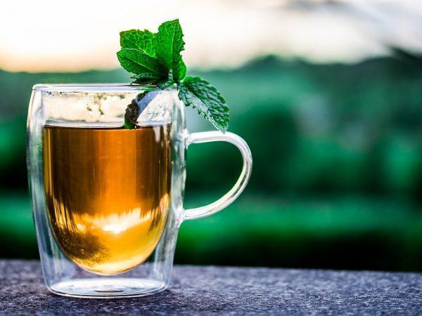 Atoqa Tea Producer Company Ltd launched its brand Northeast Brews & Nagaland Premium Gold Tea in NE States & New Delhi